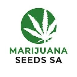 Marijuana Seeds SA