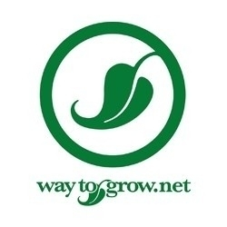 Way to Grow (Silverthorne)