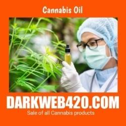 Darkweb420