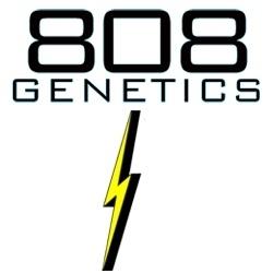 808 Genetics