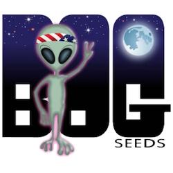 BOG Seeds