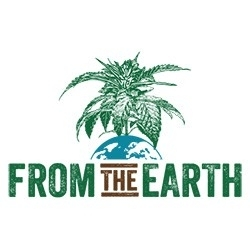From The Earth (Hanover)