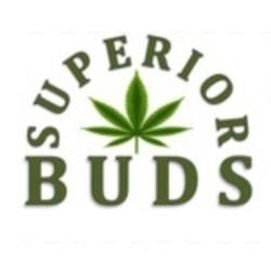 Superior Buds