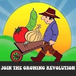 Abundant Harvest Hydroponics & Organics