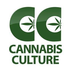Cannabis Culture (HQ)