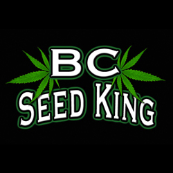 BC Seed King